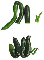 cucumber-img
